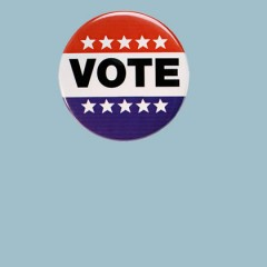 2016 Voter Guides